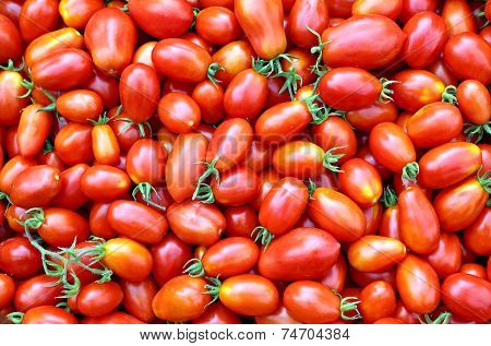 Background Of The Plurality Of Oval Red Tomatoes