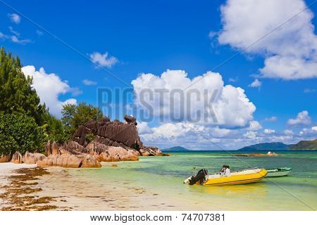Tropical island Curieuse at Seychelles - nature background