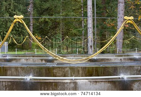 Fish Ladder Apparatus