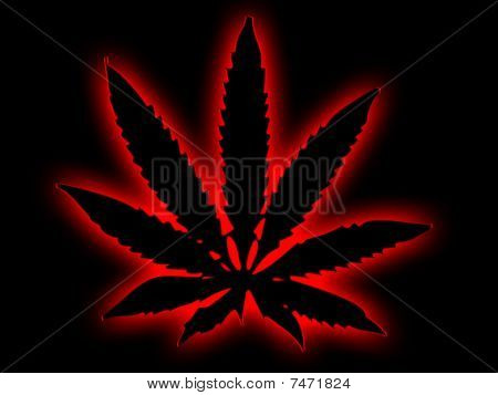 Cannabis Leaf with Red Halo