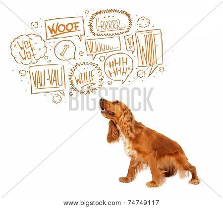 Cute cocker spaniel with barking speech bubbles above her head