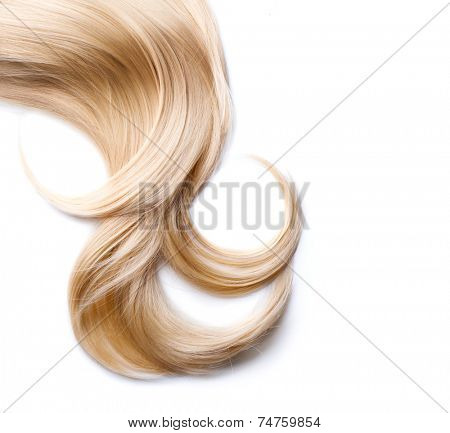 Blond Hair isolated on white. Beauty Blonde hair closeup. Lock