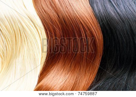 Hair Colors Palette. Different Hair colours Hair Texture. Blonde, brown and black hair colours