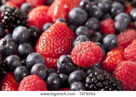 Mixed Fruit - Horizontal, Shallow Depth Of Field