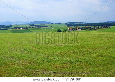 Green bavarian summer landscape