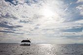 image of pontoon boat  - Pontoon floating in the water of Thailand - JPG