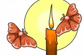image of moth  - An illustration of moths flying towards a burning candle - JPG