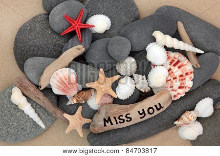 Sea shell, driftwood and pebbles on a sand beach with miss you sign.