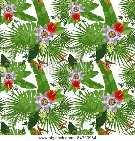 tropical seamless pattern on white background