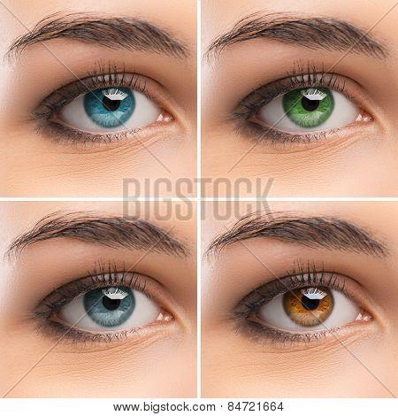 Set Of Women's Eyes