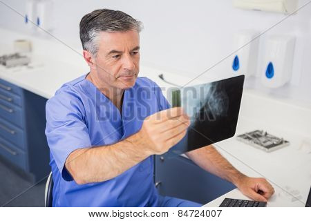 Dentist studying x-ray attentively in dental clinic