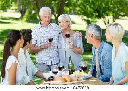 Happy senior toasting with their family on a sunny day
