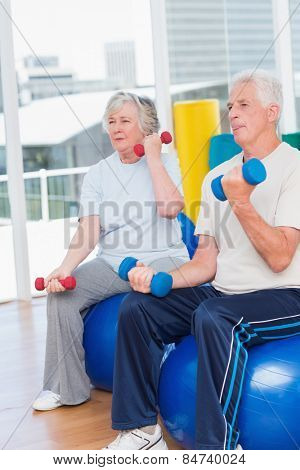 Senior couple lifting dumbbells while sitting on exercise ball at gym