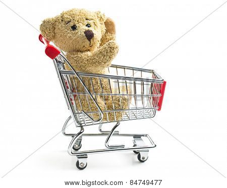 teddy bear with shopping cart