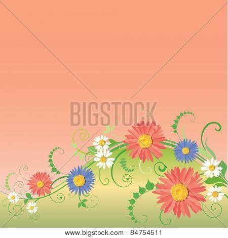 Beautiful camomiles design. Vector of summer background with gradient