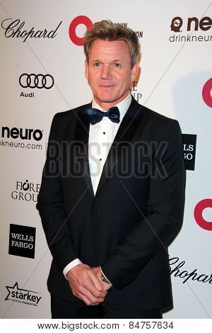 LOS ANGELES - FEB 22:  Gordon Ramsay at the Elton John Oscar Party 2015 at the City Of West Hollywood Park on February 22, 2015 in West Hollywood, CA