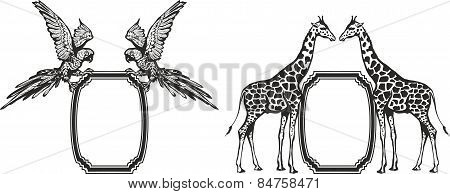 Giraffe, parrot, vector.