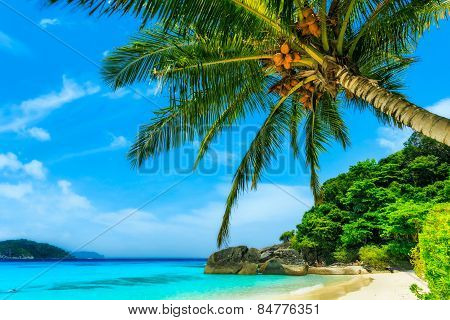 Beach Of Similan Islands