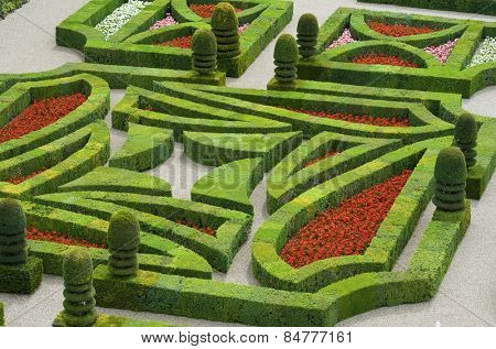 foreground of the garden of the castle of Villandry, Loire Valley, France
