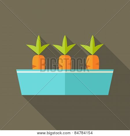 Pot With Carrots