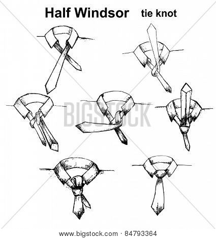 Vector tie and knot instruction, Half Windsor tie knot