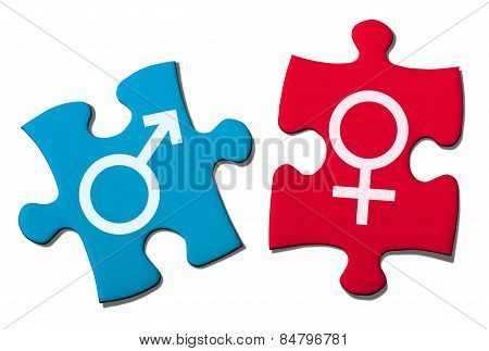 Puzzle Showing Gender Symbol.with Clipping Path.