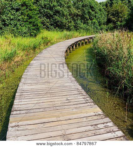 Wooden bridge for walk
