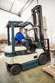 image of forklift driver  - Portrait of driver operating forklift machine in warehouse - JPG