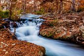 picture of guadalupe  - Beautiful Fall Foliage Surrounding the Swift Flowing Falls of the Guadalupe River Texas - JPG