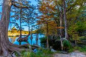 picture of crystal clear  - Bright Beautiful Fall Foliage Forest Surrounding the Crystal Clear Emerald Frio River.