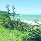 stock photo of shoreline  - Shoreline and water - JPG