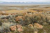 image of contortion  - Beautiful rocks among Big Sagebrush  - JPG