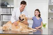 image of medical examination  - Smiling vet examining a dog with its owner in medical office - JPG