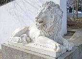 stock photo of sevastopol  - Sculpture of a lion in Sevastopol town - JPG
