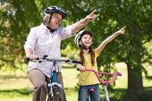 pic of grandmother  - Happy grandmother with her granddaughter on their bike on a sunny day - JPG