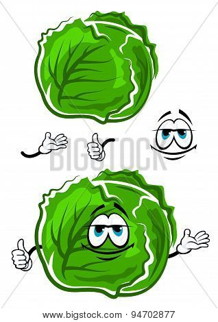 Green cabbage cartoon character with thumb up