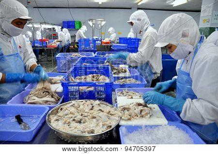 Ho Chi Minh City, Vietnam - October 3, 2011: Workers Are Cutting Raw Fresh Octopus In A Seafood Fact