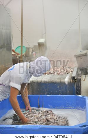 Vung Tau, Vietnam - December 9, 2014: A Worker Is Boiling Octopus Before Transferring To Process For