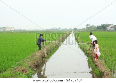 Nam Dinh, Vietnam - March 28, 2010: Children Are Playing In The Paddy Field In The Countryside Of Th
