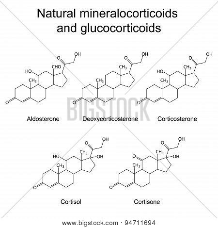 Chemical Structures Of  Corticosteroid Hormones