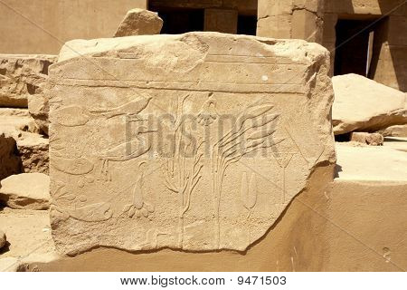 Ancient Egyptian Bas-relief
