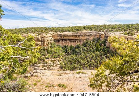 View From Sun Point - Mesa Verde