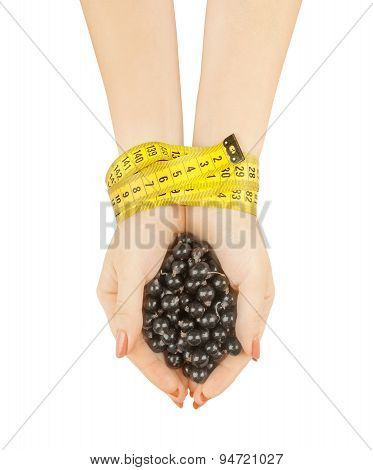 Hands Holding Currants On A White Background