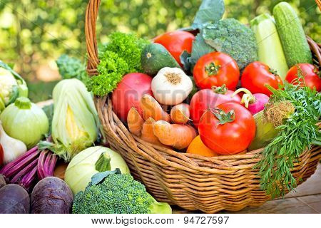 Vegetables - fresh organic vegetables