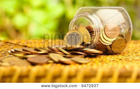 Euro Coin Bottle