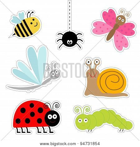 Cute Cartoon Insect Sticker Set. Ladybug, Dragonfly, Butterfly, Caterpillar, Spider, Snail. Isolated