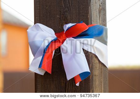 Butterfly With Russian Flag Illustration
