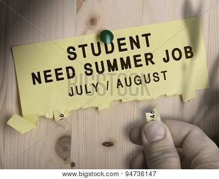 Summer Job, Seasonal Jobs Search