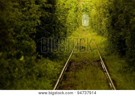 Love Tunnel In Romania