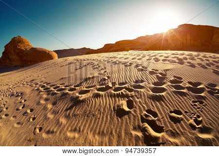 Foot prints in the desert at sunset, Sinai, Egypt